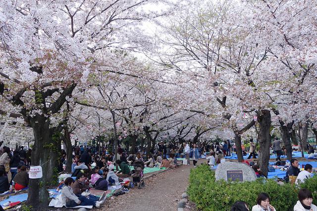 Du ngoạn công viên Tsuruma ở Nagoya
