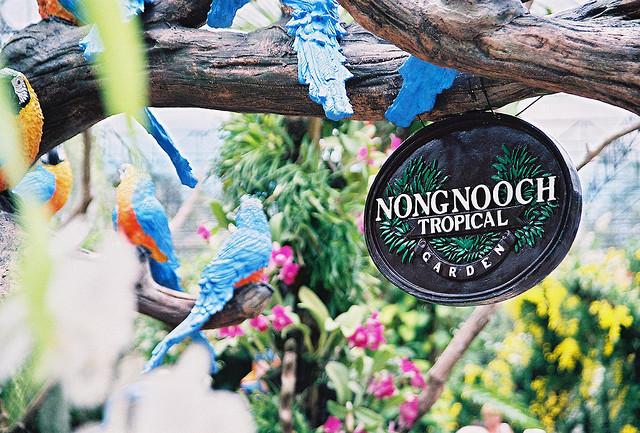 Du ngoạn vườn nhiệt đới Nong Nooch