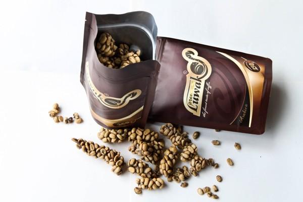 Indonesia - quê hương cà phê Chồn độc đáo