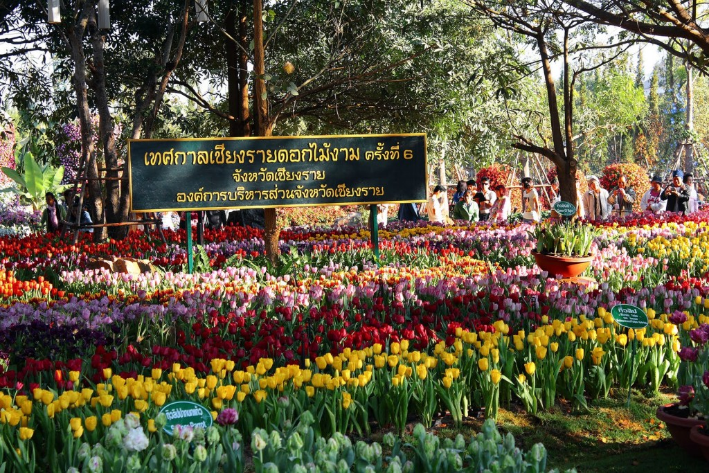 Lễ hội thú vị trong tháng 2 năm 2015 ở Thái Lan