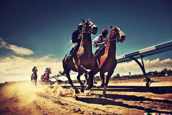 Happy Valley - trường đua ngựa nổi tiếng Hồng Kông