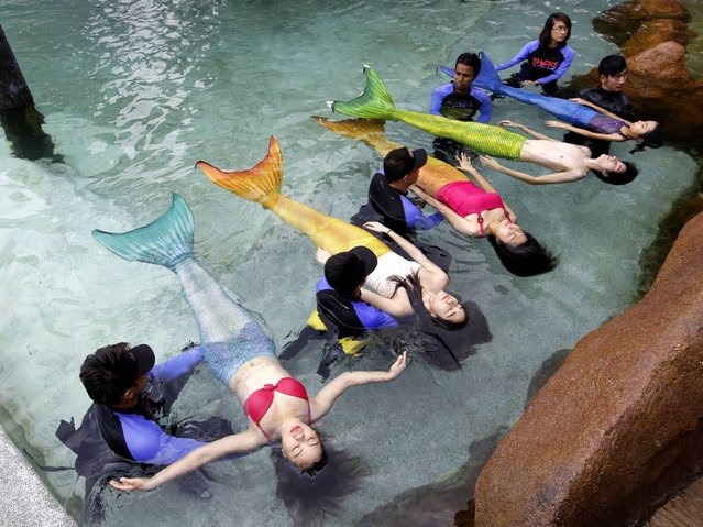 Trải nghiệm thú vị tại học viện tiên cá tại Philippines