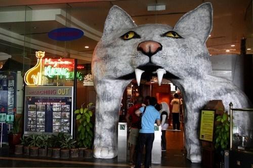Bảo tàng Mèo