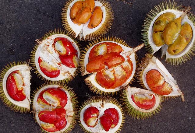 sầu riêng brunei