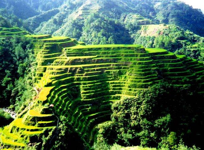 thửa ruộng bậc thang ở Luzon