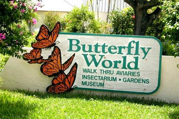 vườn bướm