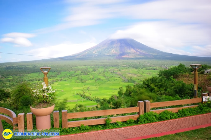 Mayon