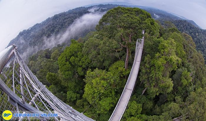 Công viên quốc gia Ulu Temburong