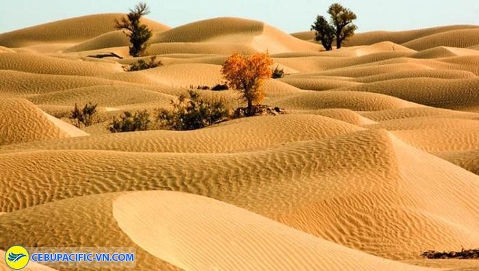 Sa mạc Gurbantunggut