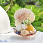 Quà lưu niệm bằng vỏ sò