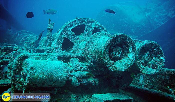 Lặn ngắm xác tàu đắm trong Thế chiến 2