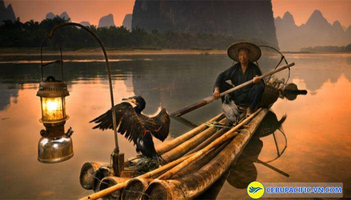 Đánh bắt cá bằng chim cốc đầy thú vị