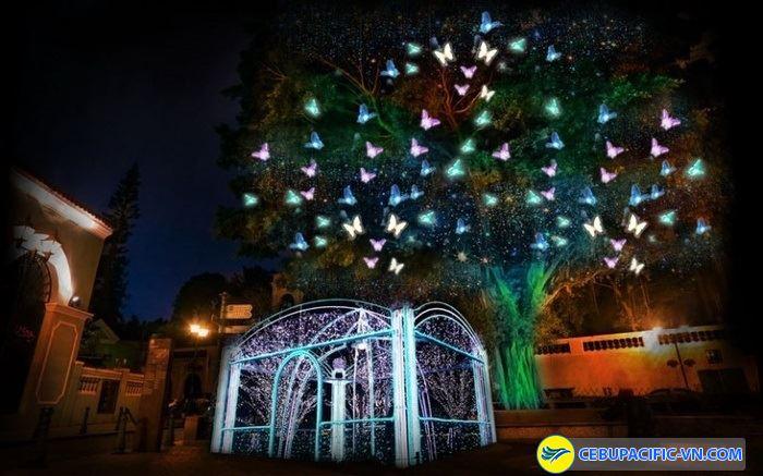 Lễ hội ánh sáng đầy màu sắc