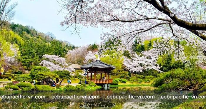 Hàn Quốc là thiên đường du lịch với nhiều cảnh đẹp