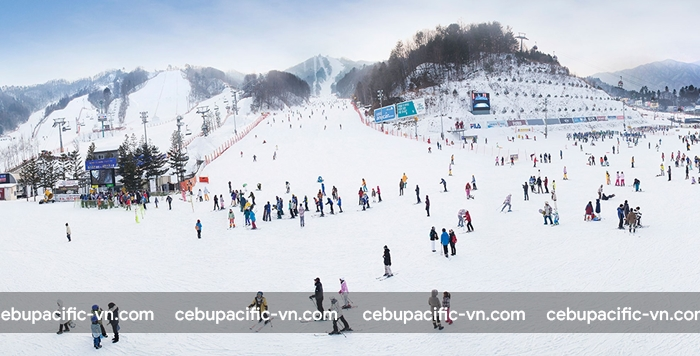 Trượt tuyết là trải nghiệm nên thử khi du lịch Hàn Quốc